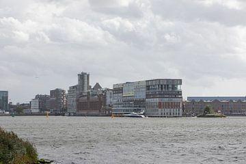 NDSM werf Amsterdam van denk web