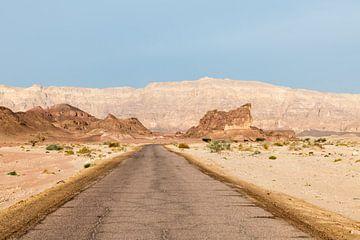timna national park in israel in the negev woestijn van Compuinfoto .