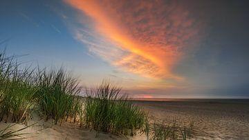 Strand von Rennesse von Harold van den Hurk