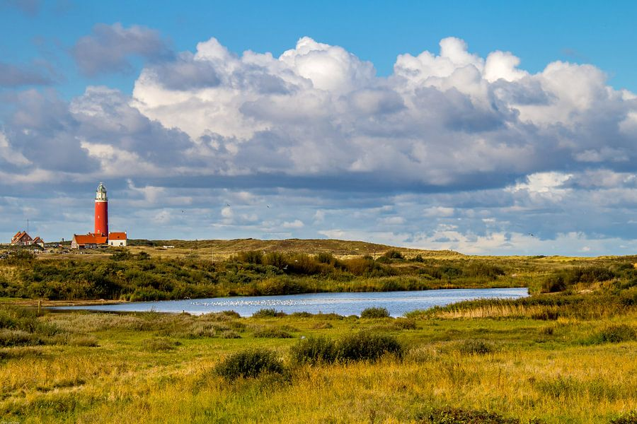 Vuurtoren Eielerland vanaf De Noordkaap - Texel van Texel360Fotografie Richard Heerschap