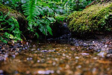 Wasserdurchfluss von Mike Van Zijderveld