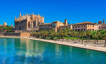 Spanje, uitzicht op kathedraal en Parc de la Mar in Palma de Mallorca van Alex Winter