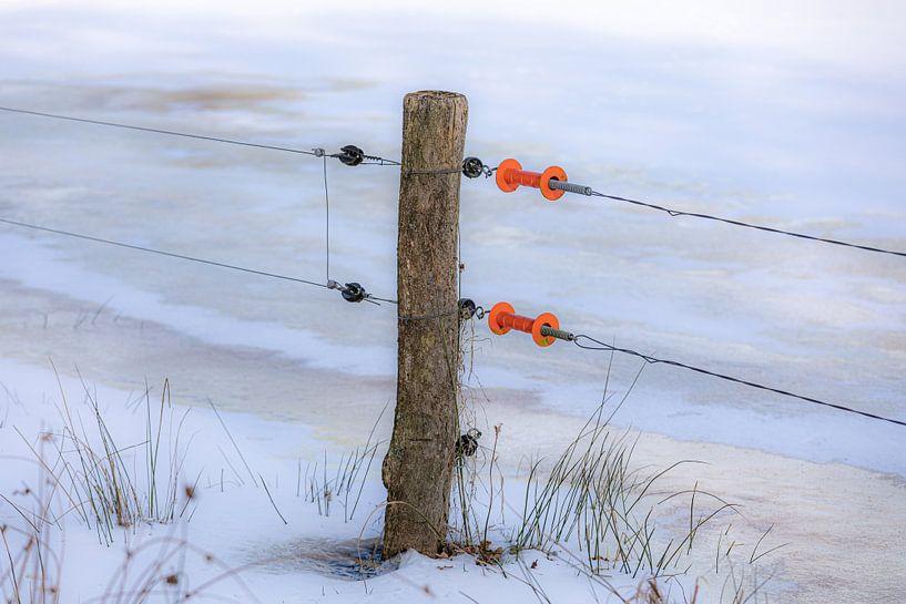 Paaltje met oranje handgrepen van Coby Koops  natuurkieker.nl