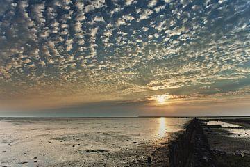 Schapenwolken over de Waddenzee bij zonsopkomst van