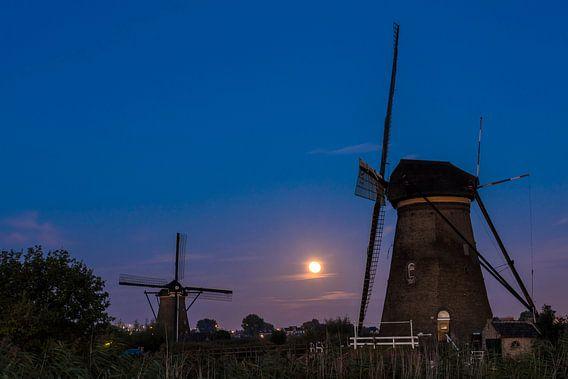 Kinderdijk met twee windmolens van Daan Kloeg
