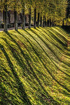 Bomenrij op het bolwerk van het Friese stadje Dokkum in de herfst van Harrie Muis