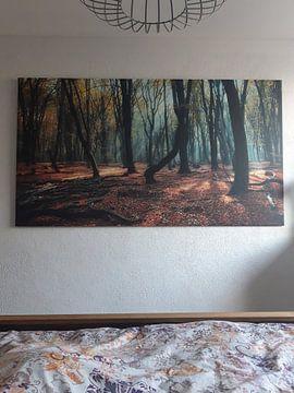Photo de nos clients: Magic Speulderbos, Magic Speulderforest. sur Saskia Dingemans