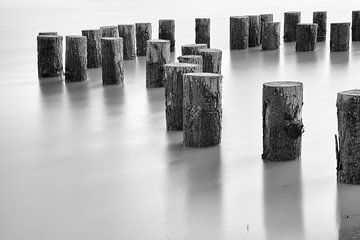 Boomstammen in het water von Jan van der Vlies