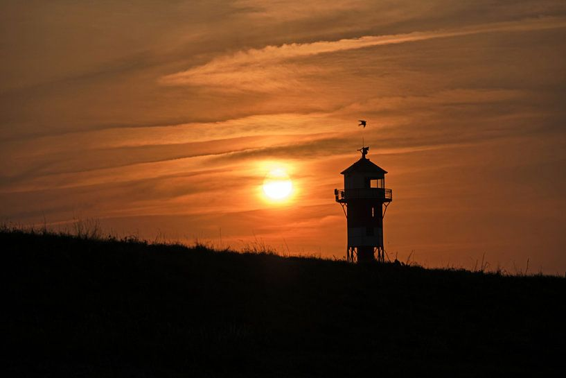 Sonnenuntergang am Elbdeich von Borg Enders