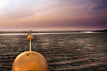 Balle Foto van Sonja Pixels
