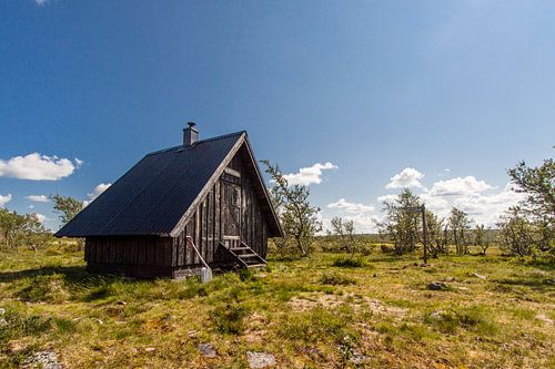 Zweedse berghut van