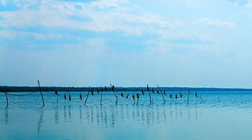 Guatemala: Meer van Petén Itzá (Flores) von Maarten Verhees