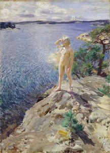 In the Skerries, Anders Zorn