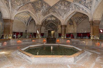 Iran: Vakilhammam (Shiraz) van Maarten Verhees