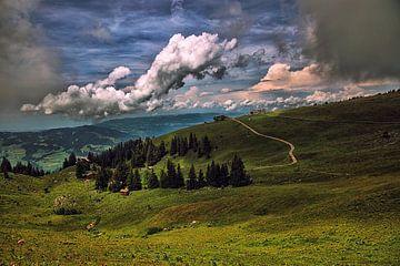 Berge Österreich von Hans van Oort