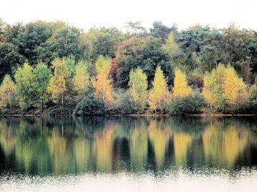 Herfst om het meer van Il se