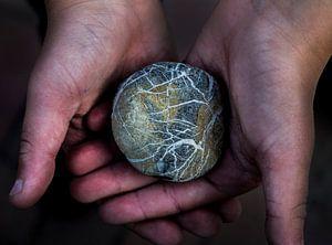 steen van Lia Altink