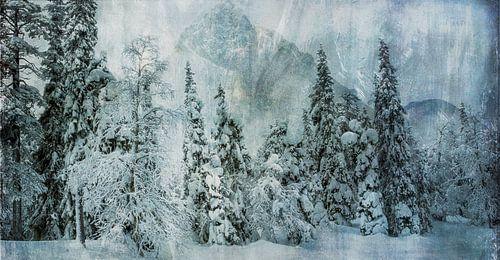 Sneeuwlandschap met bomen en bergen