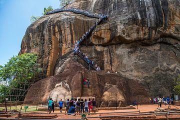 Koningsrots bij Sigiriya op Sri Lanka van Roland de Zeeuw fotografie