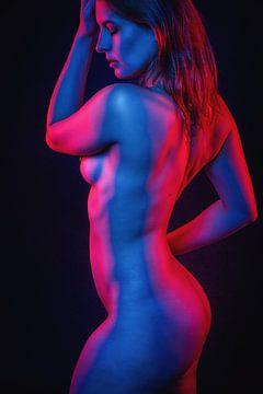 Schoonheid in rood en blauw van Jan de Wild
