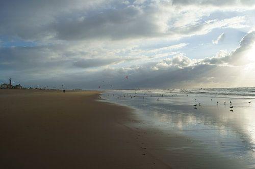 Strand van Scheveningen von Michel van Kooten