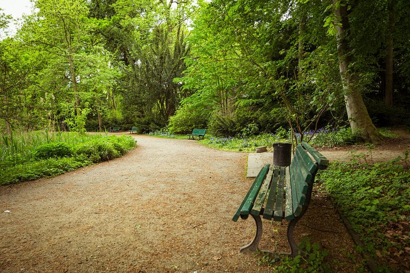 Walk at the park van Chris Snoek