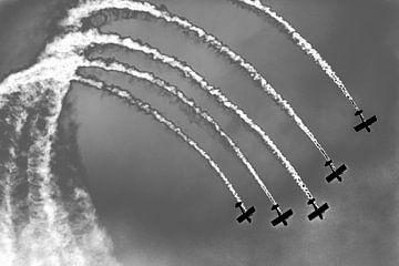 Propeller vliegtuigen in een looping van Lieven Tomme