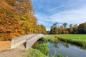 Landschap in herfst met houten brug over water in bos  van Ben Schonewille