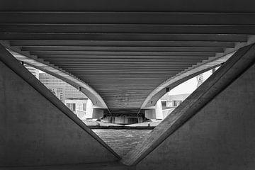 Symmetrie van Ellen van Schravendijk