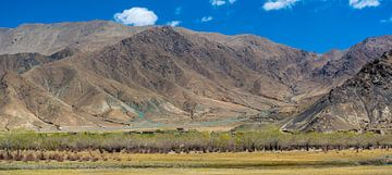 Panorama van het berglandschap in de omgeving van Gyantse, Tibet van Rietje Bulthuis