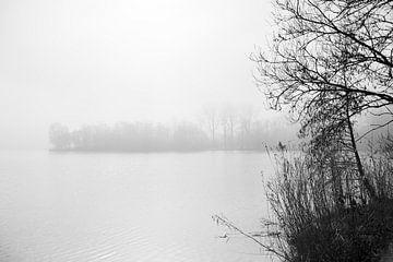 Haarlemmermeer-Wald