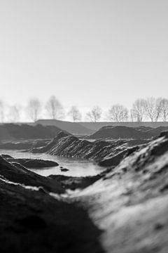 Ooijpolder im Winter | schwarz und weiß | Lensbaby von Gabry Zijlstra