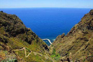 Madeira, Portugal von Michel van Kooten