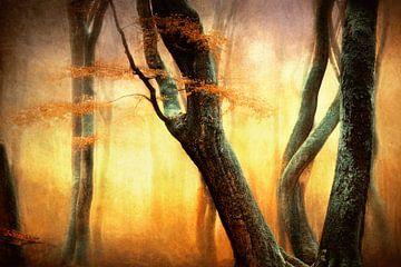 Die tanzenden Bäume von Lars van de Goor