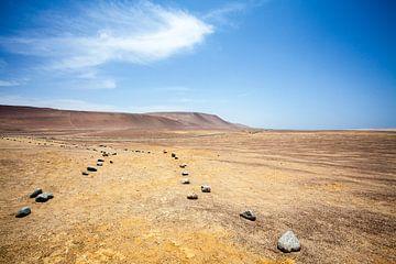 Paracas-Wüste in Peru - Südamerika von WorldWidePhotoWeb