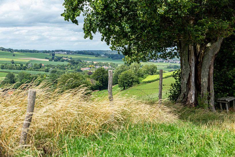 Typisch Zuid-Limburgs landschap in de buurt van Epen van John Kreukniet