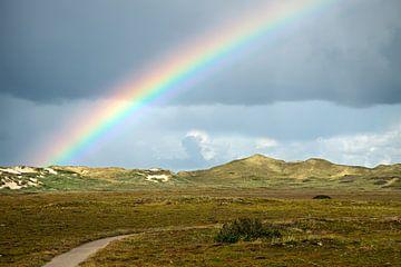 Regenboog over de duinen van BVpix