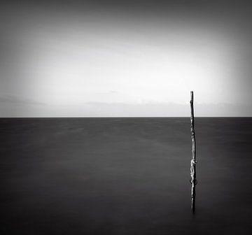 zwart wit  visnet von Niels  de Vries