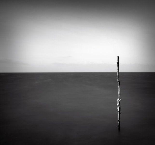 zwart wit  visnet van Niels  de Vries