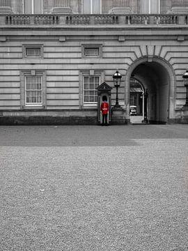 Die Wache am Buckingham-Palast von Charlotte Dirkse