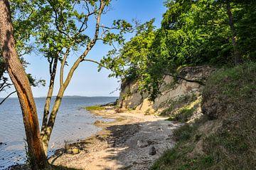 Natuurlijk strand, lagune in Lietzow, Great Jasmund Bodden van GH Foto & Artdesign