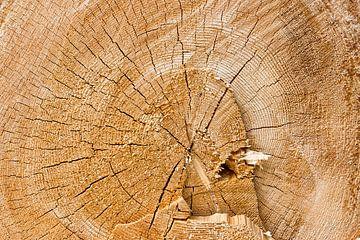 gezaagd hout van Thomas Heitz