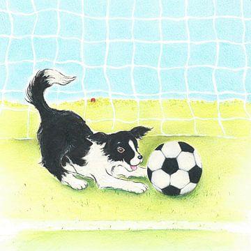 Sendie und der Fussball von Rianne Brugmans van Breugel