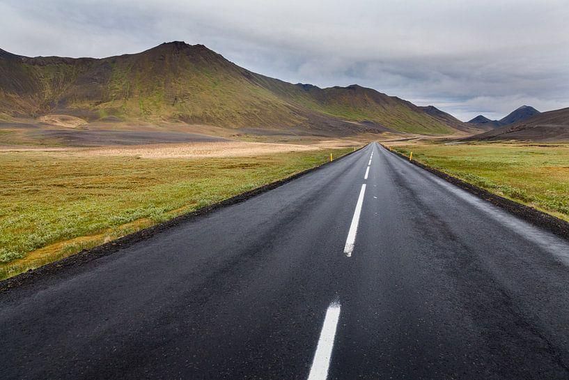 Ringweg IJsland van Bart van Dinten