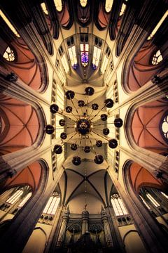 Omhoog kijken in de Utrechtse Domkerk van De Utrechtse Grachten
