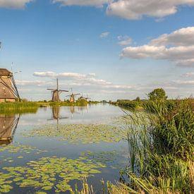 Summer in Kinderdijk van Michael Valjak