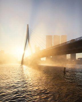 Mistige morgen in Rotterdam van Gijs Koole