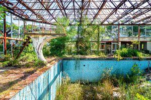 Verlassenes Schwimmbad, überwuchert von Pflanzen. von Roman Robroek