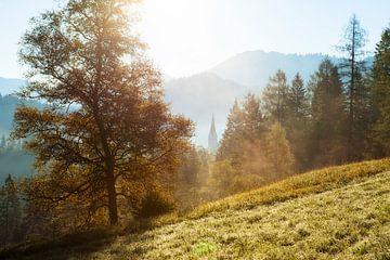 Österreich Alpen von Frank Peters