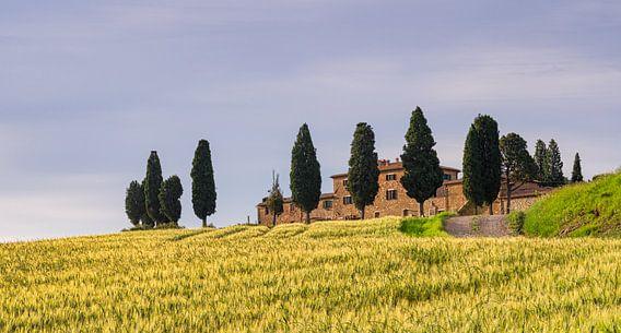 Farmhouse Genna Borborini Maria Eva - Val d'Orcia I